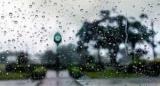 Пасмурная погода может вызвать болезнь Паркинсона