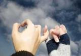 Ученые подсчитали, сколько времени необходимо для возникновения дружеских отношений